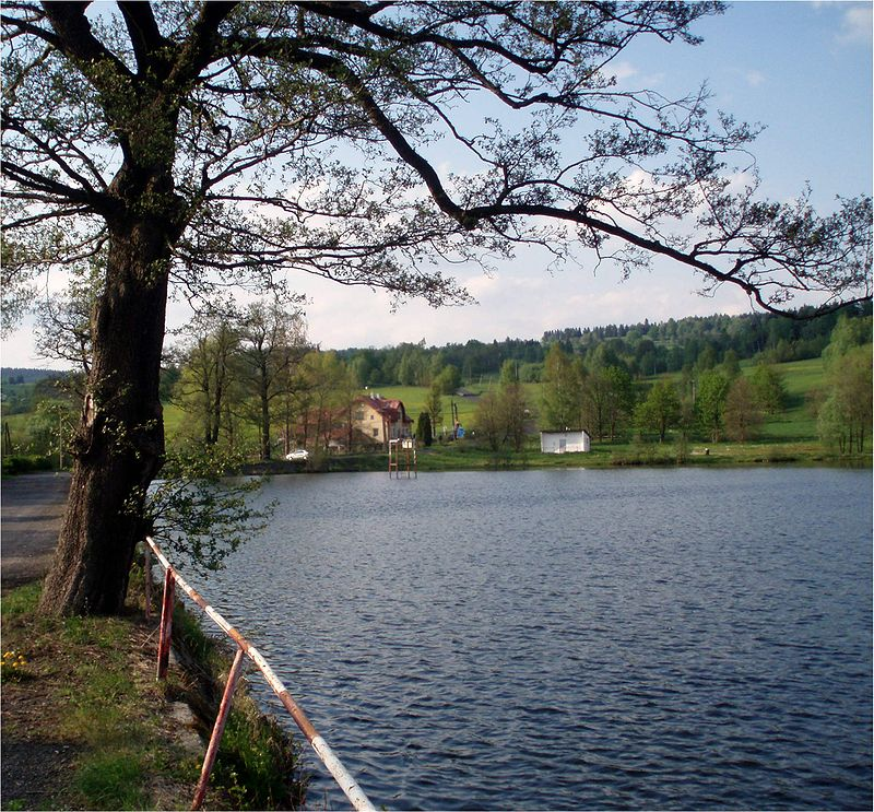 800px-Teich_Schindlwald